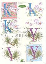 Y és K betű, Fázisos 3D