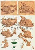 Nyuszi, kiskacsa antik, Fázisos 3D