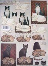 Fekete, Fehér és Cirmos macska, Fázisos 3D