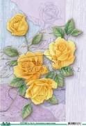 Sárga rózsa, 3D