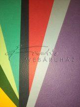 Kartonpapír - Több színben - inda mintás karton 31x21cm