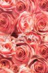 Transzparens papír - Rózsa mintás
