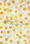 Kreatív hobby - Transzparens papír - Margaréta