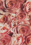 Kartonpapír - Vörös Rózsa, Karton