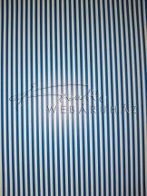 Kartonpapír - Sötétkék vonalas karton