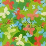 Kreatív hobby - Transzparens papír - Zöld színű, retro pillangó