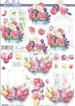 Lila virágok, Fázisos 3D