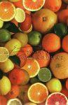 Kreatív hobby - Transzparens papír - Citrus