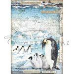 Dekupázs rizspapír A4 - Pingvinek