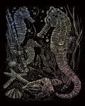 Kreatív hobby - Tengeri csikó
