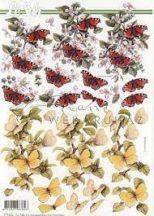 Pillangók, Fázisos 3D