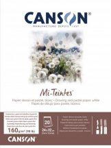Mi-Teintes CANSON, savmentes színes pasztelltömb, kétoldalas, fehér, 24x32 cm