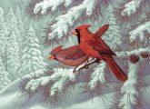 Kifestő készlet számokkal, ecsettel, felnőtteknek - 30x40 cm - Vörösbegy