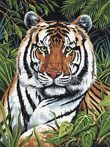 Kreatív hobby - Tigris a sűrűben