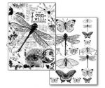 Transzfer papír - Szitakötők és lepkék