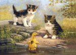 Kifestő készlet akrilfestékkel, ecsettel, gyerekeknek 11 éves kortól - 30x40 cm - Cicák kiskacsával