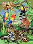 Kreatív hobby - Dzsungel