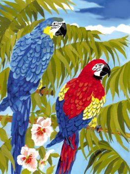 Kreatív hobby - Papagájok