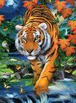 Kreatív hobby kifestő számokkal - Tigris vadászaton