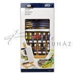 Akril festőkészlet asztali festőállvánnyal - Royal Acryl 20