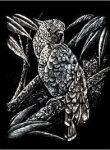 Kreatív hobby - Kakadu