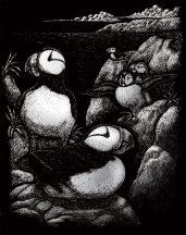 Kreatív hobby - Sarki madár