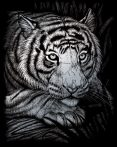Kreatív hobby - Fehér tigris