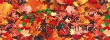 Kartonpapír - Őszi falevelek 1 Karton 1 lap