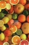 Gyümölcs mintás transzparens papír
